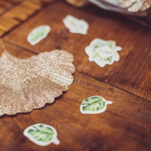 100 Confettis theme mariage Tropical