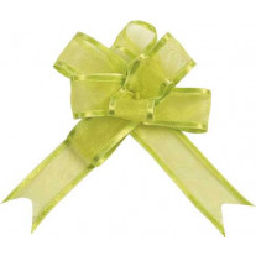 Mini noeud automatique Vert anis