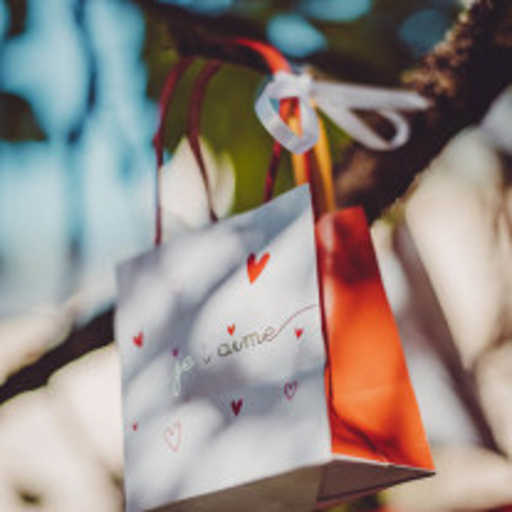 6 Sacs cadeaux Je t'Aime