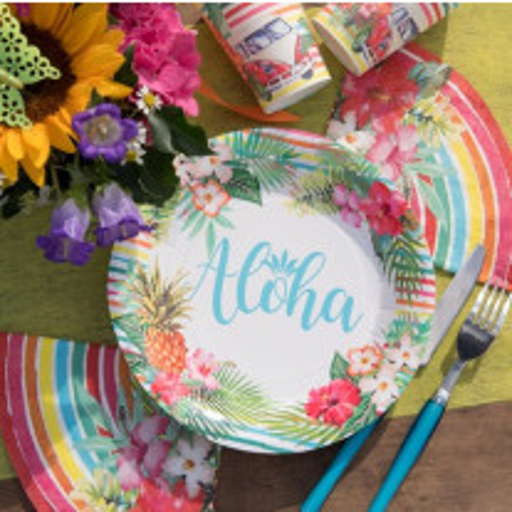 Assiette en carton Aloha