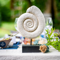 Centre de table Coquillage escargot sur socle