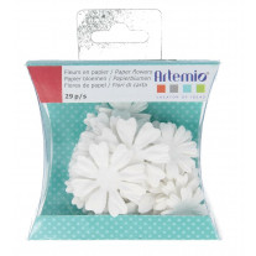 Fleurs en papier A Colorier Blanc
