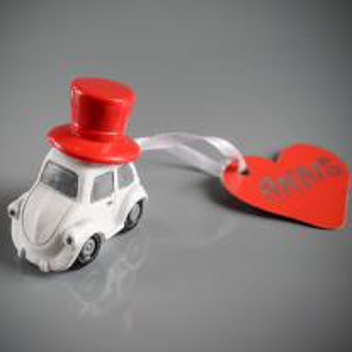 Marque place Vive les mariés voiture