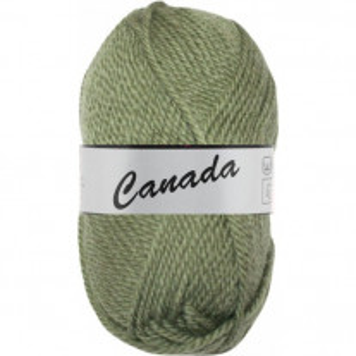 Pelote de laine Canada Lammy Yarns Kaki
