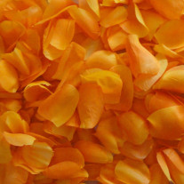 Petale de rose mariage Orange