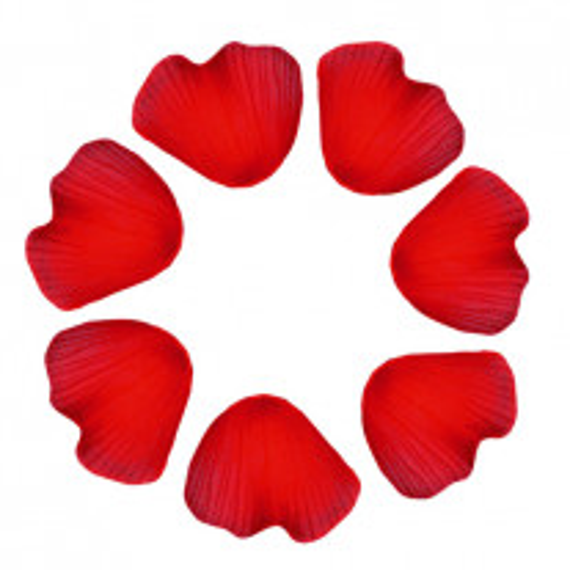 Pétale de rose Rouge x100