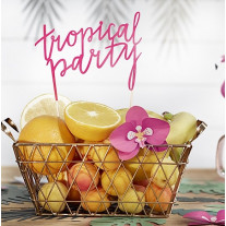 Pic Tropical Party 24cm