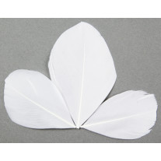 Plume Feuille Blanche x 96 pièces