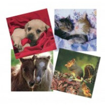Lot de 12 serviettes Tendre animaux
