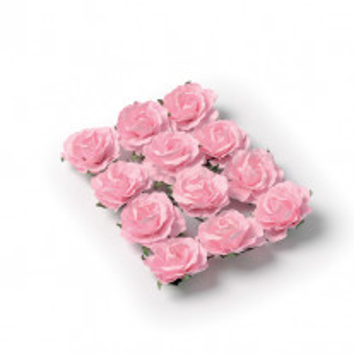 Rose a piquer Rose