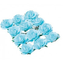 Rose a piquer Turquoise