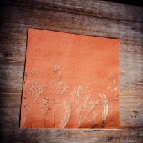 serviettes jetables Theme Brindille Terracotta