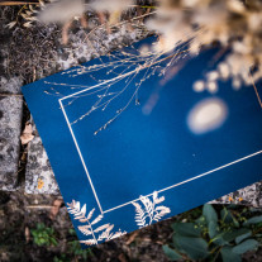 Set de table Fougere bleu marine