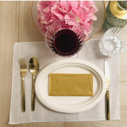 Set de table rectangle Lin Blanc