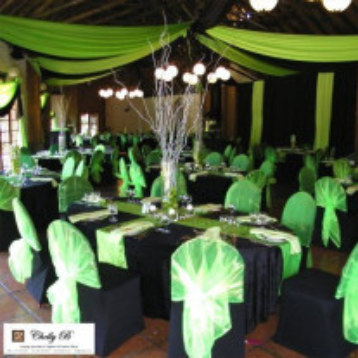 Tenture mariage Vert anis 12 mètres